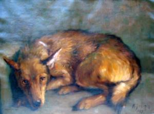 Hier kommen Sie zur Vergroesserung des Hundeporträts -  gemalt von Alfred Janigk